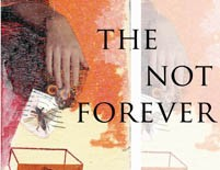 The Not Forever  |  Keith Waldrop